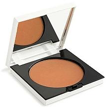 Parfémy, Parfumerie, kosmetika Kompaktní bronzující pudr - Rougj+ Terra Long-Lasting Glam Tech