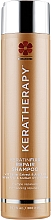 Parfémy, Parfumerie, kosmetika Obnovující vlasový šampon s kaviárovým extraktem a arganovým olejem - Keratherapy Keratin Fixx Repair Shampoo