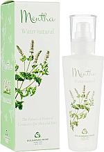 Parfémy, Parfumerie, kosmetika Mátový hydrolát ve spreji na obličej - Bulgarian Rose Aromatherapy Hydrolate Mint Spray