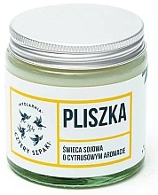 Parfémy, Parfumerie, kosmetika Aromatická svíčka Konipas - Cztery Szpaki