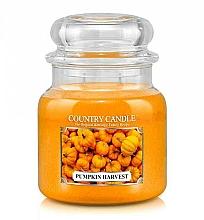 Parfémy, Parfumerie, kosmetika Vonná svíčka - Country Candle Pumpkin Harvest
